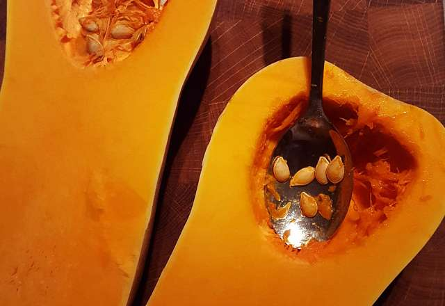 Urkärnad butternutpumpa
